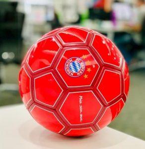 Bayern 292x300
